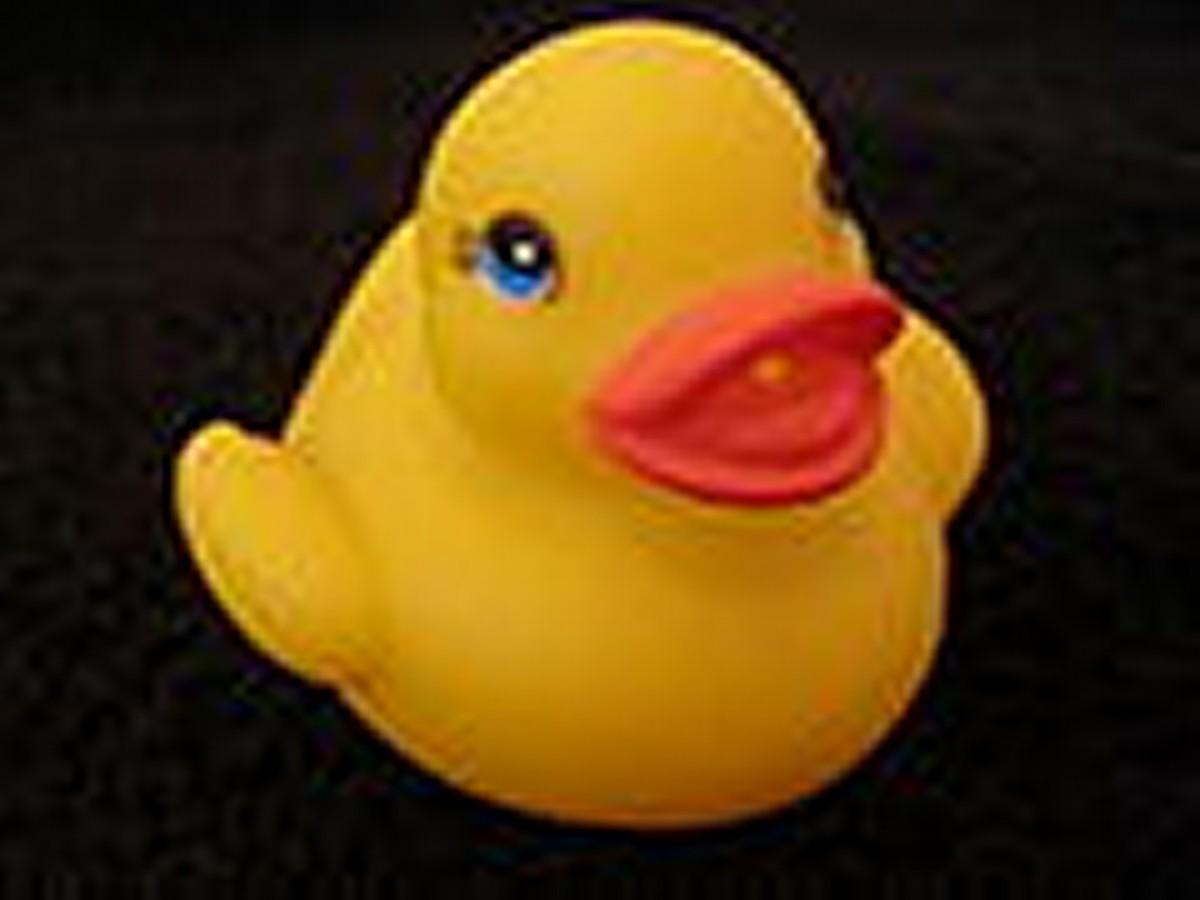 120px-Bath_duck