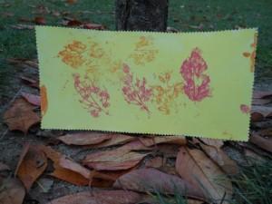 Empreinte de feuille en automne