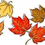 image de feuilles d'automne