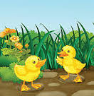picture of the song two little ducks