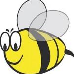 Baby Bumblebee - Paroles de chanson pour enfant en anglais