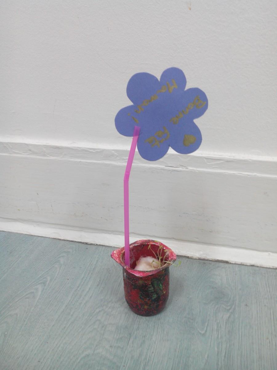 Cadeau pour la fête des mères: pot de fleur