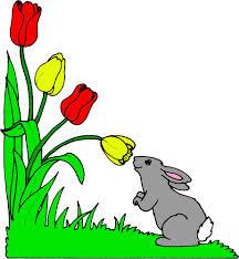 Mon petit lapin s 39 est sauv dans le jardin chanson pour - Mon petit lapin s est cache dans le jardin paroles ...