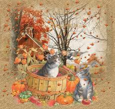 L'automne est une chanson de pluie: chanson pour enfant