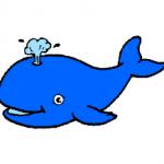 La baleine chanson pour enfant