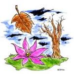 colchiques_fleur