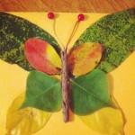 Papillon en feuilles d'automne