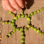 Le Land art , activité nature pour les enfants