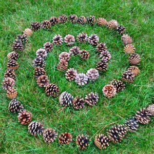 Le Land Art Activité Nature Pour Les Enfants Education Enfancefr
