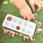 Activité glace aux marrons glands et chataignes